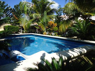 Tropical garden residence apartamentos con aire acondicionado internet wi fi piscina jardin - Apartamentos tropical garden ...