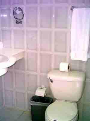 Trucos para mantener limpio el baño   Los elementos de un ...