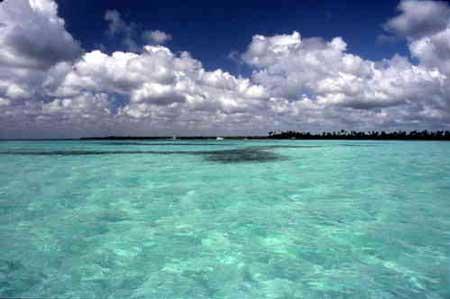 Saona santo domingo repubblica dominicana - Isola di saona piscine naturali ...